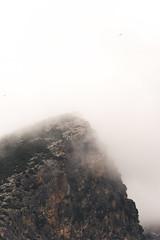 Light (Alessandro Palombini) Tags: spain spagna fujifilm fujifilmxt2 fujix nebbia fog nature winter white alessandropalombini composicion bird mountain