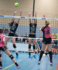41170617 (roel.ubels) Tags: flynth fast nering bogel vc weert sint anthonis volleybal volleyball indoor sport topsport eredivisie 2018 activia hal