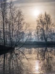 Winter Sun (iPhone Fotograaf) Tags: landscape ice nature sun winter groningen iphone8plus dutch morning sky reflection