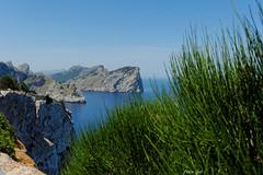 Cap Formentor - Mallorca (Peter Goll thx for +7.000.000 views) Tags: 2014 mallorca urlaub capformentor formentor spain spanien insel sea blue blau grün green landscape seascape