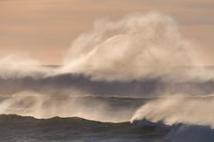 Stormy Sea (pbandy) Tags: beach ocean sunset waves winter yachats oregon nature surf