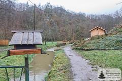 Mühlenbach der Strotzbüscher Mühle