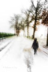 Morsure hivernale (Fabrice Le Coq) Tags: route arbre paysage forêt ciel parc neige piéton silouhète flou couleur fabricelecoq