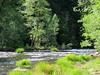Merced River at Yosemite NP in CA (Landscapes in The West) Tags: yosemitenationalpark california mercedriver
