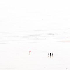 L'hiver est très long (cactus2016) Tags: bréhec highkea minimalisme bretagne