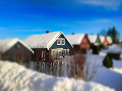 Playing with my dollhouses today. (evakongshavn) Tags: house houses buildings streetphotography streetview snow winter new light white snowglobe tiltshift miniature village colors colours colorful colourful red green blue 7dwf