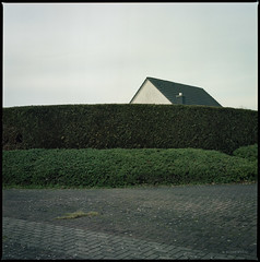Biotop (Konrad Winkler) Tags: provinz seelze hecke haus gehsteig minimalismus hasselblad503cx kodakportra160 mittelformat 6x6 epsonv800