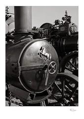 Traction 004 (radspix) Tags: mamiya 645 1000s sekor 55105mm f45 bergger pancro 400 pmk pyro