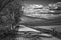 Country Road.. (Angelo Petrozza) Tags: country road strada campagna blackandwhite biancoenero bw bicicletta bicycle clouds nuvole sky cielo alberi trees viale walk shadow ombra mountain bike angelopetrozza pentaxk70 55300f458