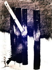 ( Time was taking its toll on the old wooden bridge ) (Wandering Dom) Tags: decaying old wooden bridge time toll humans architecture earth multiverse roam wandering being nothingness reality dreams