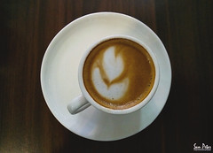 the cup of love (Sam Petar) Tags: cup love flower fine art iraq baghdad coffee papproti mobile huawei