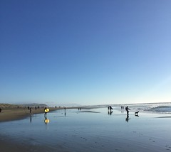 Saturday afternoon, Ocean Beach, San Francisco, reflections in the wet sand. (JoeGarity) Tags: surfer sand oceanbeach sanfrancisco