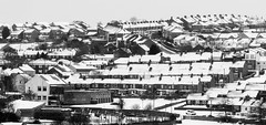 Sacriston and the Snow. 2018. (CWhatPhotos) Tags: cwhatphotos findon hill sr7 snowy buildings houses roofs white out winter beast from east beastfromtheeast snow heavy cold weather extreme freeze time sacriston county durham north england uk olympus village light photographs photograph pics pictures pic picture image images foto fotos photography that have which with contain mk digital camera product micro four thirds 43rds 43 ii sigma 60mm art prime lens sacristonwmc working mens club wmc mirrorless em5