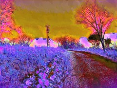 Signal Hill (flynryon) Tags: flynryon texture canvas flickr fingerpaintedit iamda paintbookca mobile art scumble mike ryon ipainter landscapes portraits figures mashablecom iphone digital paintings gravel road hill top north east kansas