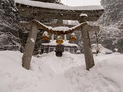 P1011333 (Rambalac) Tags: asia japan lumixgh5 forest snow water азия япония вода лес снег