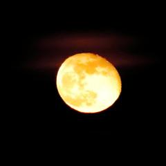 Blue Super Moon Wanes,Aberdeen_feb 18_26 (Alan Longmuir.) Tags: grampian aberdeen misc sky moon night bluesupermoon bluesupermoonwanes