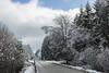 letzte Woche im Venn (glasseyes view) Tags: glasseyes view forest winterreise winter winterlight trees hohes venn belgium belgique belgien nature reserve nationalpark landscape landschaft snow snowy