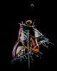 Fountain _2018_Feb-20041 (butchinsky) Tags: bavaria bayern butchinsky copyrightbyhelmutschmid dreiventile droplet drops fountainanordnung helmutschmid highspeed münchen rotorangeblau tropfenfotografie vierventile wasser wasserskulpturen wassertropfen wassertropfenfotografie waterdropart