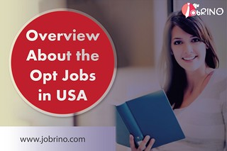 Overview About the OPT Jobs in USA