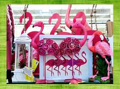 Flamingo Land (M.P.N.texan) Tags: metal figurine decor decorations store display flamingo flamingos photoshopping