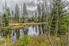 Serenity (*Capture the Moment*) Tags: 2017 bavarianforest bayerischerwald bäume fog forest fotowalk landschaften natur nature nebel sonya7m2 sonya7mii sonya7mark2 sonya7ii sonyfe2470mmf4zaoss sonyilce7m2 trees wald wetter