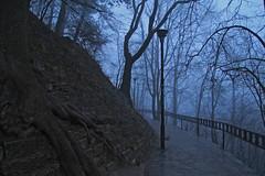 High castle, Lviv (rob.brink) Tags: ukraine lviv lvov city urban castle eerie creepy mist fog