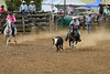 343A7092 (Lxander Photography) Tags: midnorthernrodeo maungatapere rodeo horse bull calf steer action sport arena fall dust barrel racing cowboy cowgirl