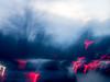 20171221-002 (sulamith.sallmann) Tags: abstract abstrakt analogeffekt analogfilter blur effect effekt filter folie folientechnik licht lichter light unscharf berlin deutschland deu sulamithsallmann