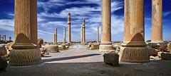 Apadana Columns (freakingrabbit) Tags: columns ruins iran apadana persepolis persia artaxerxes parsa archemid
