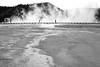 Walking around the Grand Prismatic Spring (witajny) Tags: landscape landscapephotography hotspring spring mountains forest people algae nationalpark yellowstone wayoming blackwhite blackwhitephotography contrast yellowstonenationalpark fog foggy