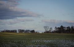 February in Hittarp (frankmh) Tags: landscape field sky cloud winter hittarp helsingborg skåne sweden outdoor