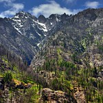 Ridgelines, Draws, Spurs, and Snowcapped Mountain Peaks (North Cascades National Park Complex) thumbnail