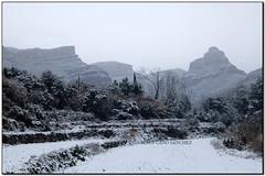 Nevada a Vallderrós, Riells del Fai (el Vallès Oriental) (Jesús Cano Sánchez) Tags: elsenyordelsbertins fujifilm xq1 catalunya cataluña catalonia barcelonaprovincia valles vallesoriental cinglesdeberti lavalldeltenes biguesiriells riellsdelfai vallderros neu nieve snow nevada2018
