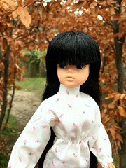 I've been thinking, and i've got this plan (dolldudemeow24) Tags: sindy doll lily custom reroot black hair fringe bangs white dress path leaves trees winter 2018