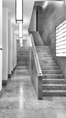 Aufzug | Elevator (artist:DAX) Tags: contrastandlines treppenhaus bwphotooftheday bnw bwcrew staircase bwstyleoftheday monochrome architecture bwsociety fineartphotobw bnwsociety photooftheday bwlover bnwcaptures artchitecture archilovers archdaily monochromatic architecturehunter monoart blackandwhite smartshots modernarchitecture muenster artistdax exploremuenster samsungsnapshooter interior meindeutschland mobilephotography
