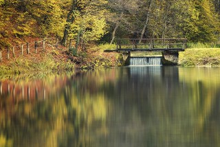 0689 Jankovac Autumn Reflections