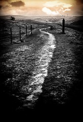 Life's not all black and white...... (Missy Jussy) Tags: landscape lancashire selectcolour blackwhite blackandwhite bw path sky sunset clouds horizon windfarm fence fantastic50mm grass light water canon canon5dmarkll 50mm ef50mmf18ll canon50mm outdoor outside countryside piethornevalley rochdale
