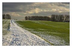 Trail (bavare51) Tags: felder feldwegschnee wolken sky büume landschaft landscape schnee spuren