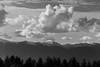 Nuvole sopra i Sibillini (luca_pictures) Tags: marche italy sibillini montagne cielo nuvole bw alberi inverno tramonto picchi