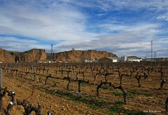 El viñedo (kirru11) Tags: viñas pueblo campo peñas rocas castillo paisaje cielo bodega quel larioja españa kirru11 anaechebarria canonpowershot