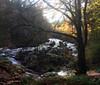 river braan (stusmith_uk) Tags: scotland landscape perthshire dunkeld thehermitage riverbraan glenbraan october 2017