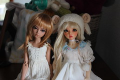 IMG_4103 (zenchifu) Tags: minifee bjd sale ria celine fairyland denofangels doa den angels