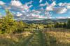 Take a walk... (Aufklatscher) Tags: nature natur green grün grass gras clouds wolken sky himmel sunshin sonnenschein trees bäume berge hills landscape landschaft walk spaziergang croatia freedom freiheit eos70d tokina weiitwinkel