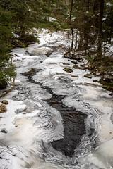 DSC_1427 (stefanh.varberg) Tags: albäck varbergsfotoklubb fotoklubben fruset is isformationer landsbygd landskap människor natur skog träd utflykt vatten vattenfall veddige vinter