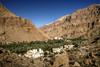 wadi tiwi oman oasis (mariusz kluzniak) Tags: mariusz kluzniak middleeast arabian oman desert mountains rocky oasis