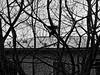 BS-Heidberg, Blick aus dem Fenster (bleibend) Tags: 2018 bs braunschweig heidberg bsheidberg olympus omd em5 olympusomd olympusem5 mft m43 m43cameras altglas sigma sigma70210mmnikonf