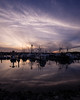 _DSC2980-2 (exceptionaleye) Tags: availablelight a7ii ilce7m2 sony southerncalifornia tunaharbor exceptionaleye sonyphotographing sonya7ii california variotessartfe41635 zeiss emount sandiegobay fishingboats boats sky water saltwater ngc