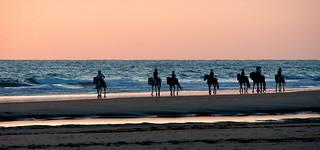 El caballo y el mar.