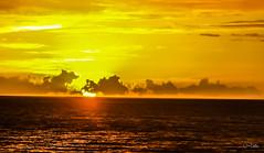 Hawaii-LonePalm-13.jpg (Chris Finch Photography) Tags: shoreline sunset kohala volcano chrisfinchphotography blacksandbeach ʻanaehoʻomalubay goldcoast landcapes landscape waikoloa sunsets pacificocean abay hawaiianphotography hawaii kohalacoast kiholobay landscapephotographs hawaiiphotography keawaikibay landscapephotographer beach ocean utahphotographer wwwchrisfinchphotographycom chrisfinch volcanoes shore lonepalm lone landscapephotography coast pacific bigisland