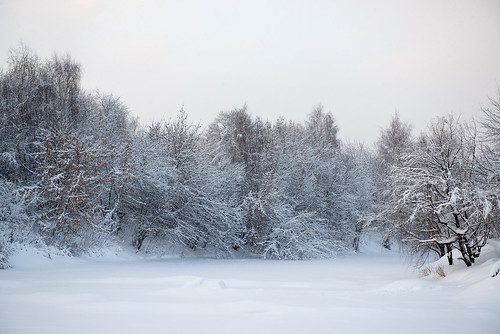 Winter lake ©  Andrey